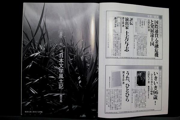 SDIM5970-001.JPG