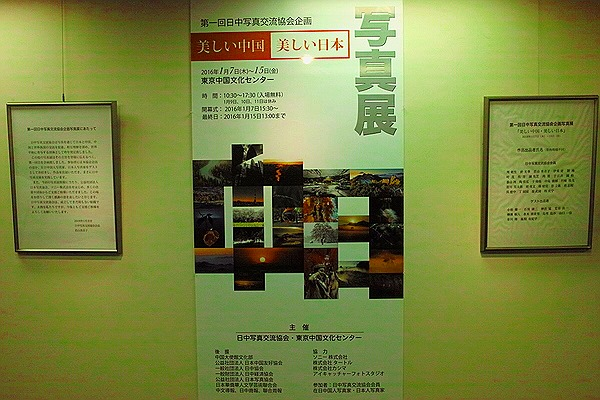 SDIM2113-001.JPG
