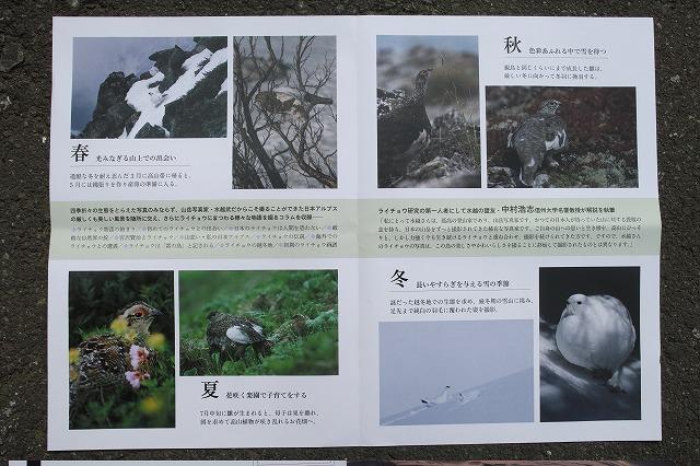 s-SDIM5713.jpg