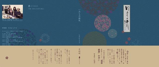 s-n1_web.jpg