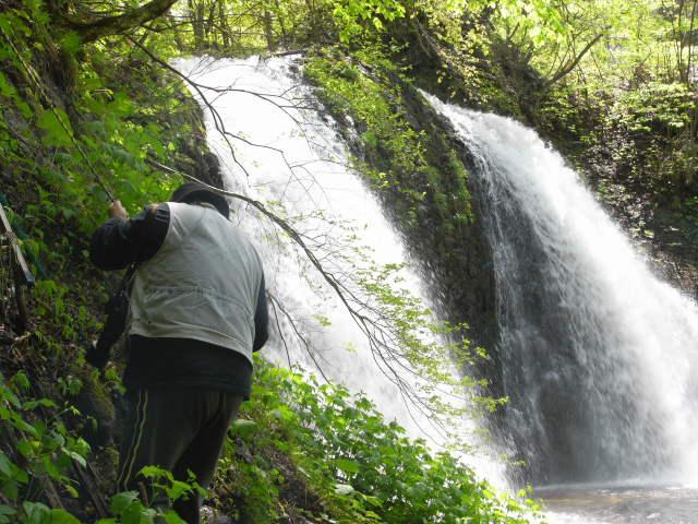 藤の滝を取材中。太宰は「滝壺は三方が高い絶壁で、西側の一面だけが狭く開いて、そこから谷川が岩を噛みつつ流れ出ていた。」(魚服記より)と書いている。(photo:K編集者)