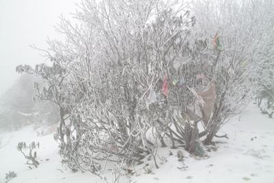 12月11日。2日前に来た道があまりにも悪路だったため、3400メートルを越す峠を越えて平武に抜けたが、普通車で普通タイヤの僕らの車では1000メートルの氷雪の谷は恐かった。