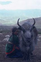 ネパール・ムスタンno.0055