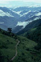 ネパール・ドルパno.0010