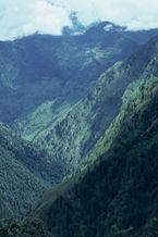 ネパール・ドルパno.0017