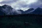 ネパール・ドルパno.0019
