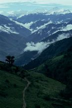ネパール・ドルパno.0022