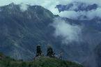 ネパール・ドルパno.0024