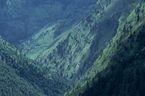 ネパール・ドルパno.0030