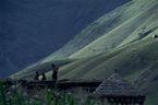 ネパール・ドルパno.0045