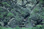 ネパール・ドルパno.0052