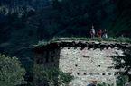ネパール・ドルパno.0067
