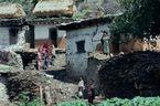 ネパール・ドルパno.0073