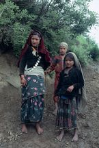 ネパール・ドルパno.0100