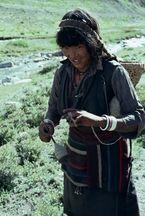 ネパール・ドルパno.0101