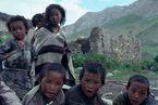 ネパール・ドルパno.0108