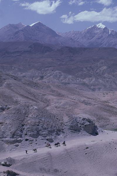 ネパール・ムスタンno.0072