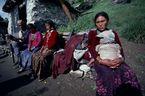 ネパール・ドルパno.0127