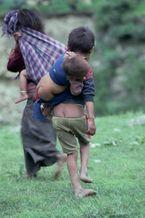 ネパール・ドルパno.0141