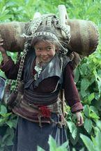 ネパール・ドルパno.0151