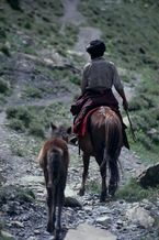 ネパール・ドルパno.0153