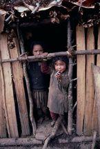 ネパール・ドルパno.0155