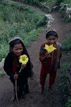ネパール・ドルパno.0163